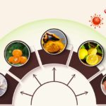 5 Immunity Boosting Foods